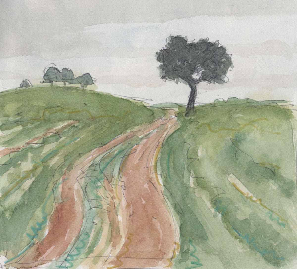 Road with holm oaks, watercolor
